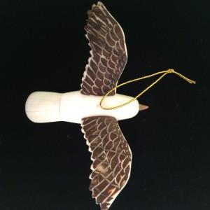 Tagua Nut Pelican
