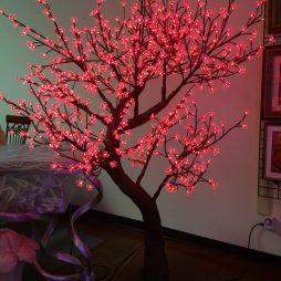 Nadina Cherry Blossom Tree, Color Changing