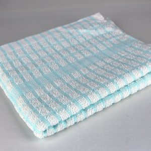 Dish Towel, White and Blue Check