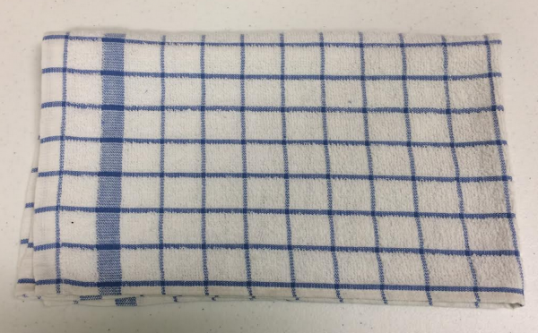 Blue Check Dish Towel